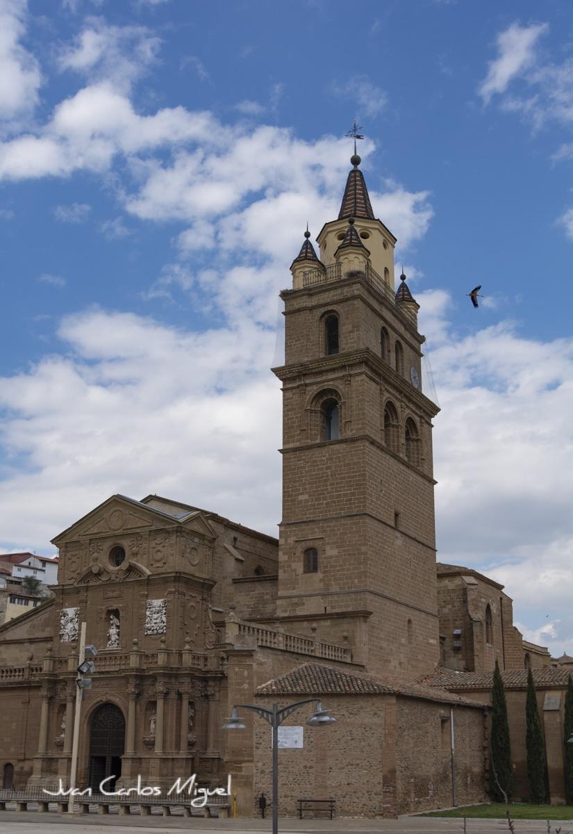 catedrallado1