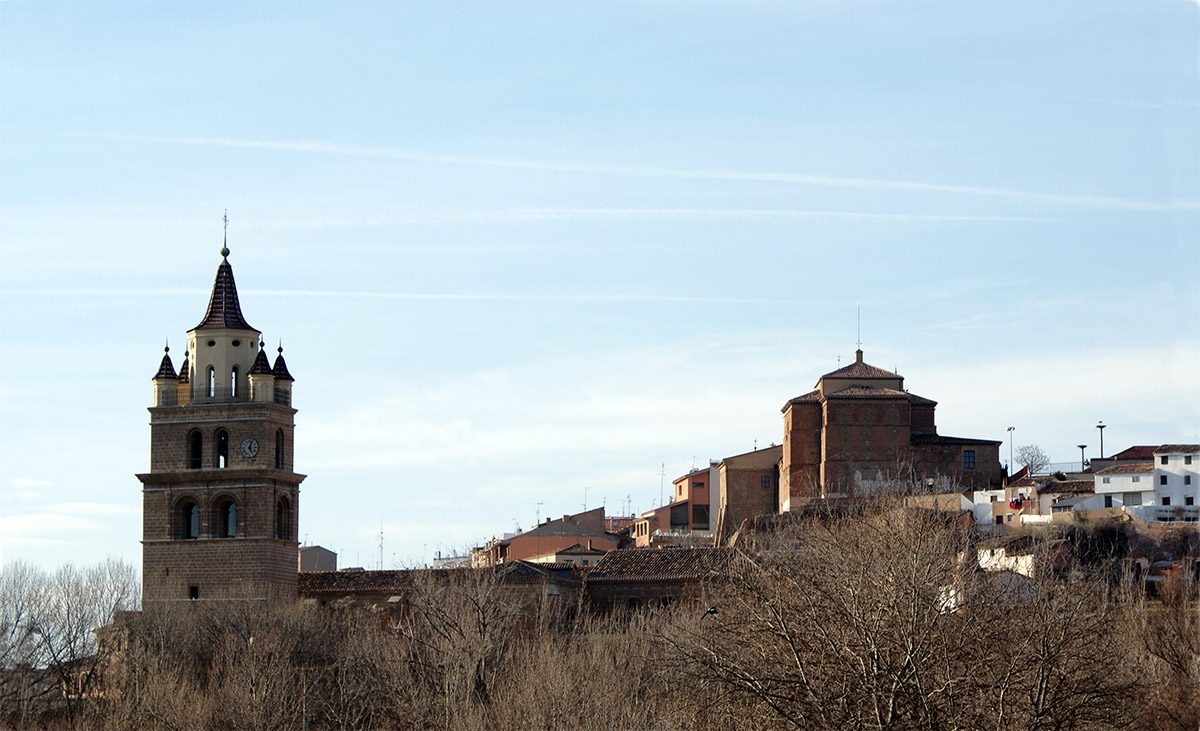 catedraltorre5