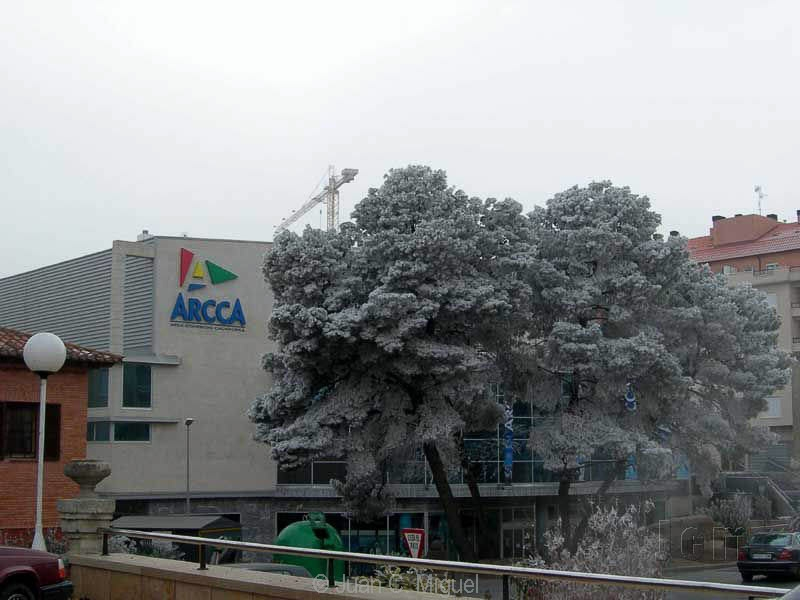 arcca_navidad